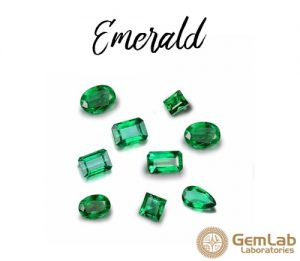 Emerald A Precious Gemstone